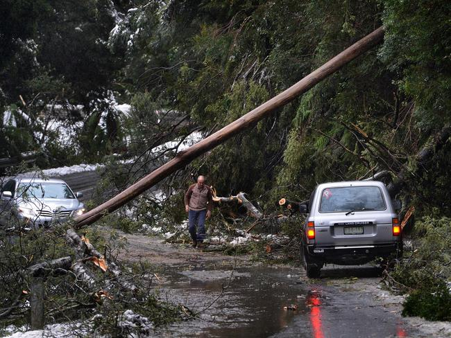 "Visitors to Mt Donna Buang faced numerous trees blocking access to the summit. Picture: Steve Tanner <blockquote class=""twitter-tweet"" lang=""en"">  <p>Hoping that all workers are safe today in these awful conditions. <a href=""https://twitter.com/hashtag/Melbswest?src=hash"">#Melbswest</a> <a href=""http://t.co/1JCFb4fFaJ"">pic.twitter.com/1JCFb4fFaJ</a></p>— SMS_West (@SMS_West)   <a href=""https://twitter.com/SMS_West/statuses/481288327132233728"">June 24, 2014</a> </blockquote>  <script async="""" src=""//platform.twitter.com/widgets.js"" charset=""utf-8""></script> Sub-type: commentCAPTION: Hoping that all workers are safe today in these awful conditions. #Melbswest pic.twitter.com/1JCFb4fFaJ— SMS_West (@SMS_West) June 24, 2014"