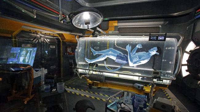 A Na'vi in a science lab while in the queue for the Avatar Flight of Passage ride at Pandora-World of Avatar.