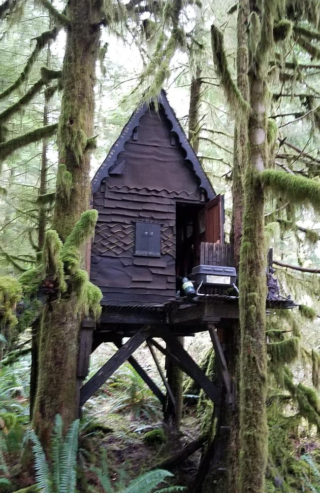 "Police described the cabin as ""an elaborate treehouse that resembled a fairy or gingerbread house"". Picture: King County Sheriff's Office"