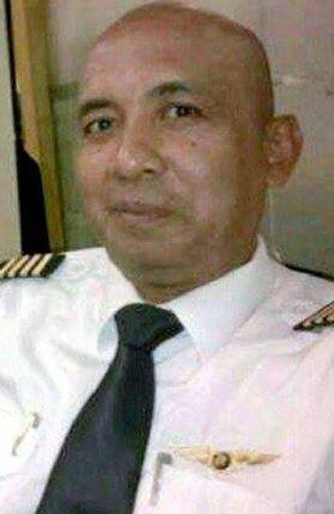 Experts float pilot suicide theory