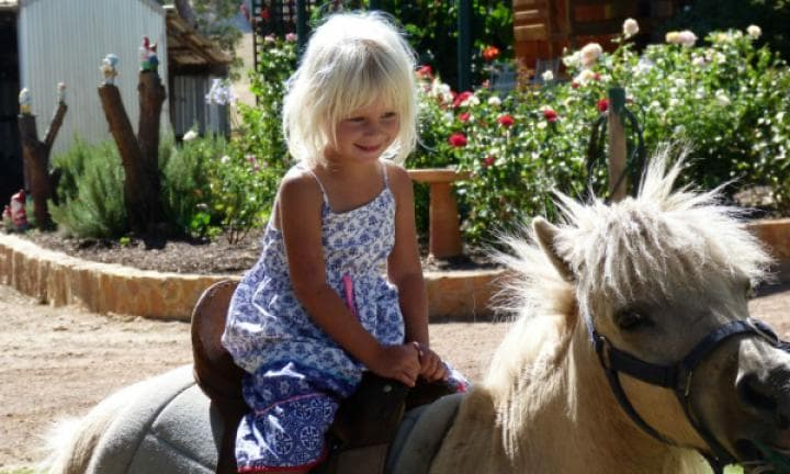 The top 10 family-friendly things to do in south-west Western Australia