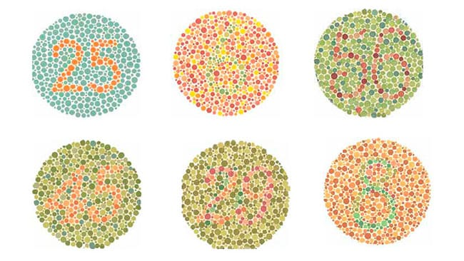 The Ishihara colour blind test.