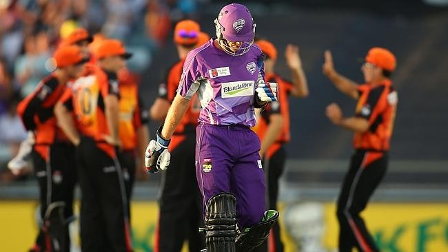 Tim Paine of the Hurricanes heads from the field as the Scorchers celebrate during the Big Bash League Final match between the Perth Scorchers and the Hobart Hurricanes at the WACA in Perth.