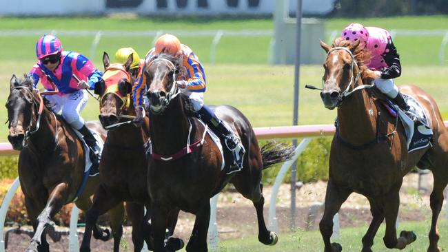 Mr Manhattan (outside) has won his past two races in town. Picture: Simon Bullard