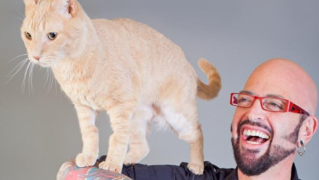 My cat from hell s jackson galaxy debunks common cat myths for Jackson galaxy music