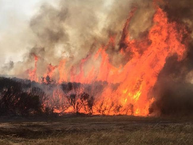 Esperance bushfires, Western Australia. 17th November 2015. Picture: Kate Sainty/Facebook .