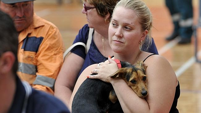 A woman hugs her dog at the Armadale community meeting this morning. Many spent an anxious night away from their properties not knowing the fate of their homes. Picture: Justin Benson-Cooper.