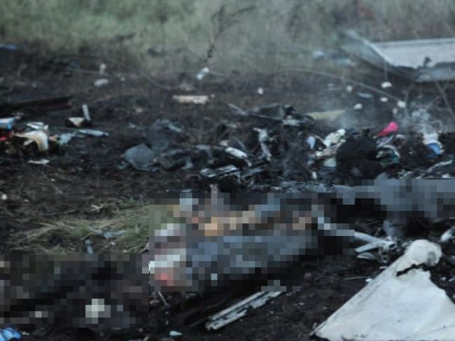 Total devastation ... the wreckage of Malaysia Airlines flight MH17 near the town of Shaktarsk, in rebel-held east Ukraine. Picture: Dominique Faget
