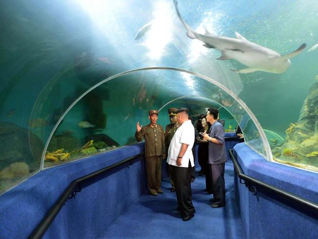 Kim Jong-un visits an aquarium at the Songdowon International Children's Camp in Wonsan. Picture: AFP
