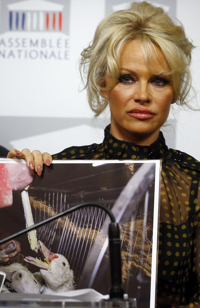 Animals rights defender ... Pamela Anderson displays photos showing the force-feeding of geese to make foie gras. Picture: AP Photo/Francois Mori