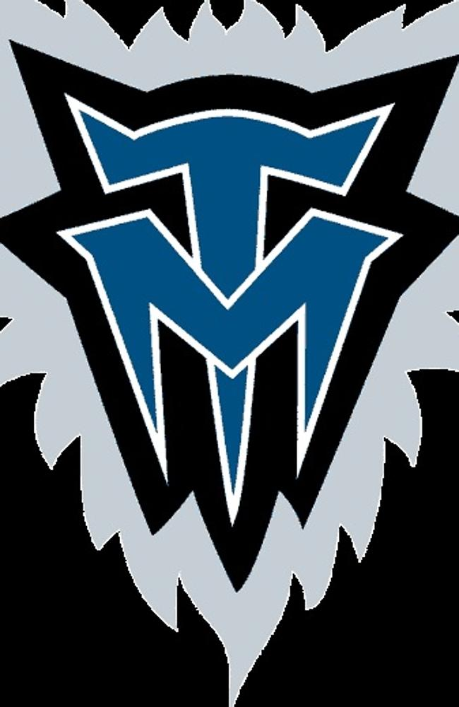 The Timberwolves have never won an NBA title. But their logo is a ripper.