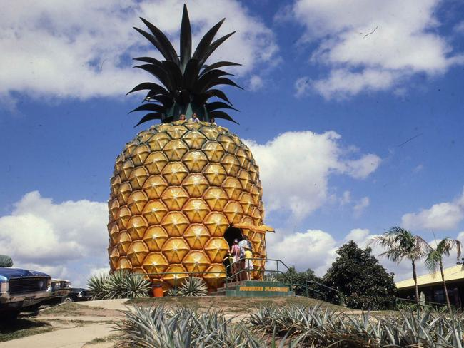 The Big Pineapple in Nambour, Queensland, has long been a family favourite. Picture: Geoff McLachlan