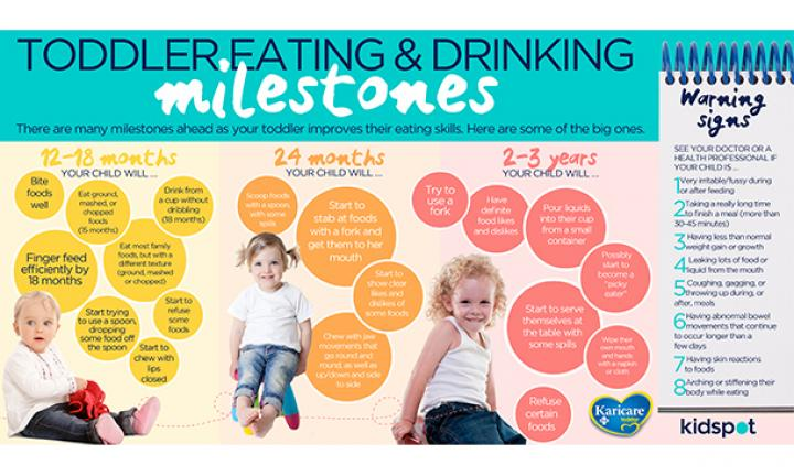 Toddler eating and drinking milestones