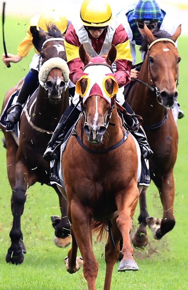 Rosehill tips: Big bets and market movers