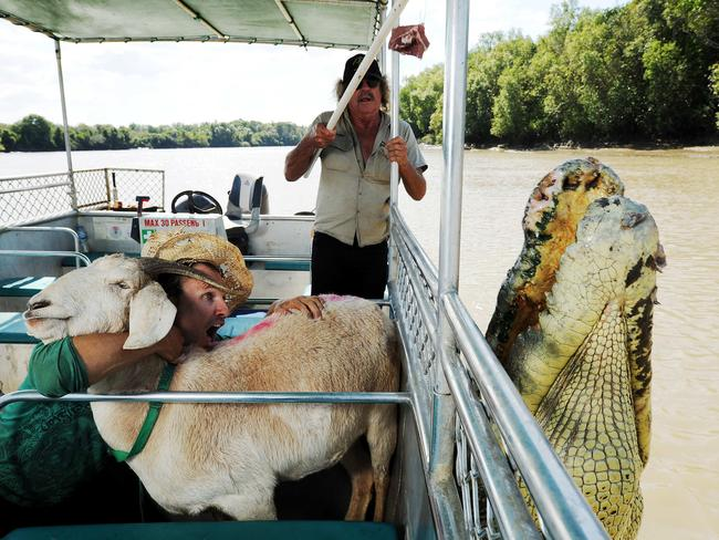 Gary the Goat and Jimbo meet Brutus the croc on an Adelaide River Wildlife Cruise. Picture: Supplied