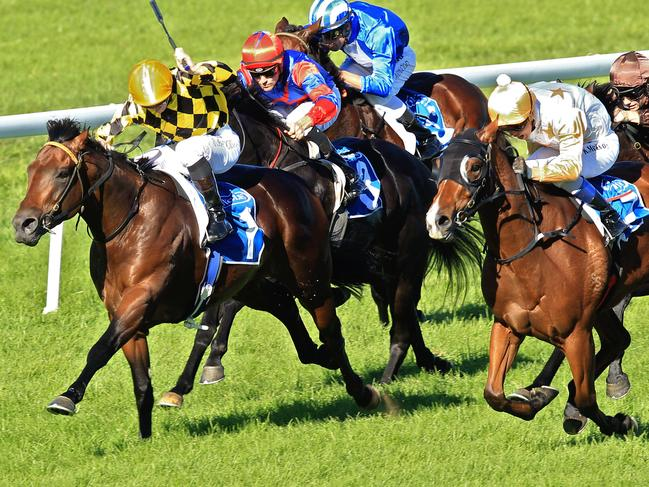 Matt Jones says you can bookend the Wellington program with his two best bets.