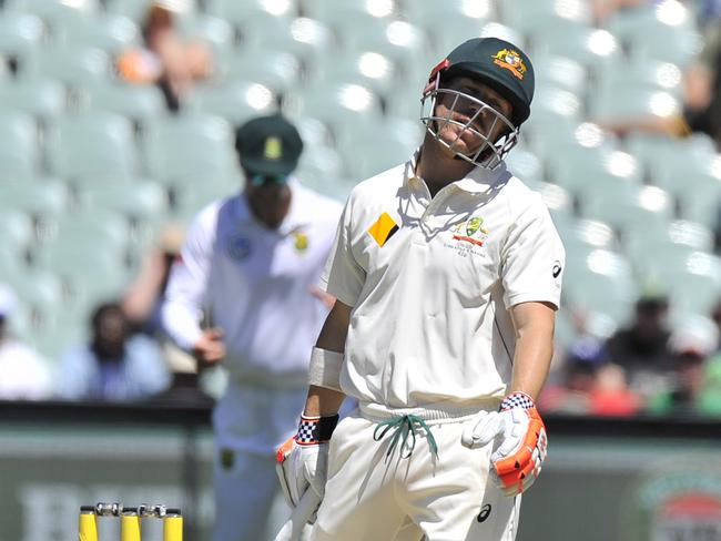 It hasn't been the best year for David Warner.