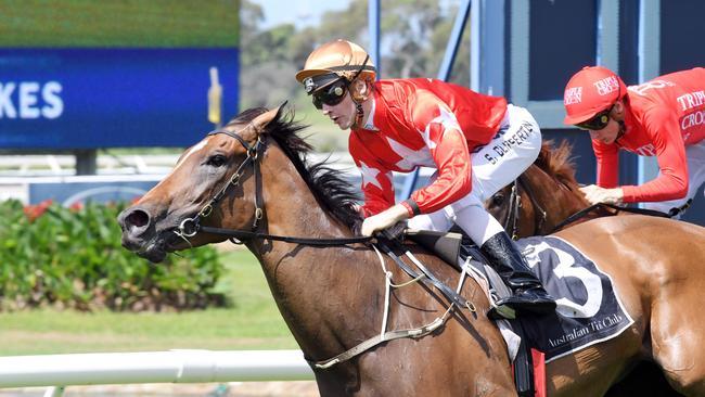 Jockey Sam Clipperton will return home to Sydney to ride.