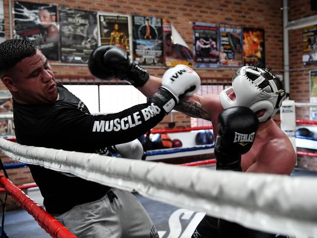 NRL star Paul Gallen sparring with Tai Tuivasa. Picture: Grant Trouville