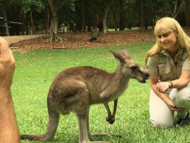 Australia Zoo's Terri Irwin, who appears in the documenatary, promotes co-existence.