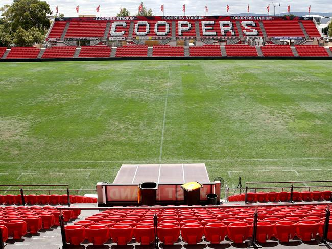 Poor pitch condition at Hindmarsh Stadium. Photo: Calum Robertson