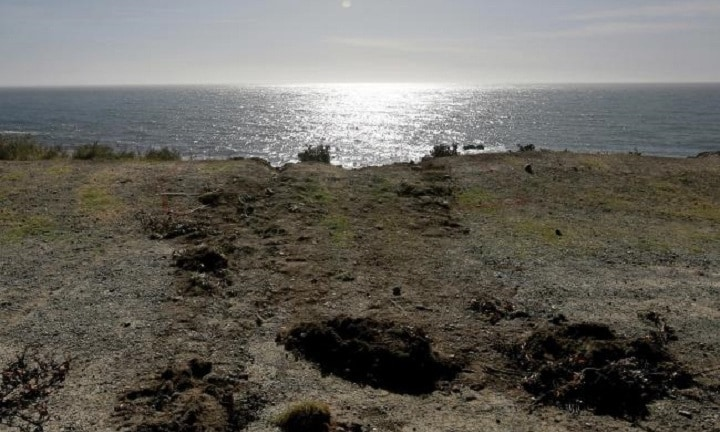 Tracks lead away from the edge of the cliff where the SUV of Jennifer and Sarah Hart went off the Pacific Coast Highway near Westport, California. Picture: APSource:AP