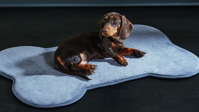 Aldi's memory foam pet mat is available in four colours for just $19.99.