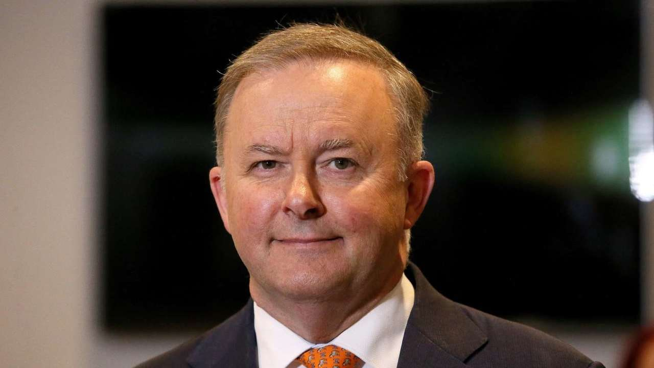 Anthony Albanese is 'the best tactician Labor has'