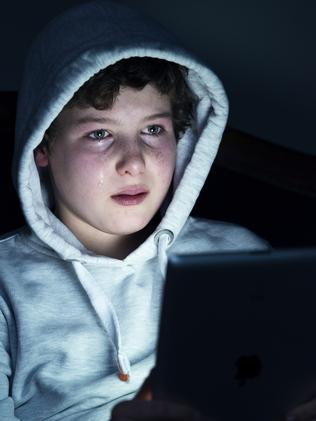 Year 10,11 and 12-year-olds learn how to adjust their privacy settings and get tips on what posts might hurt or offend others. Picture: Supplied