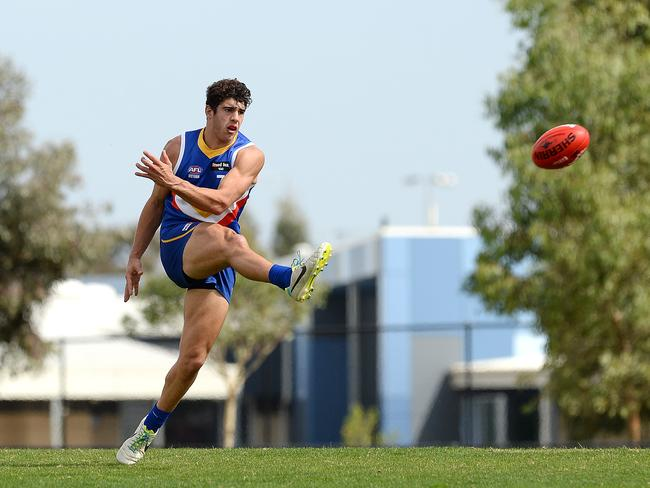 Eastern Ranges' Christian Petracca has been a ball magnet during the 2014 AFL Under 18 Championships.