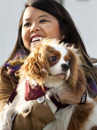 Nurse Nina Pham has recovered from the disease. Picture: The Fort Worth Star-Telegram, Juan Guajardo.