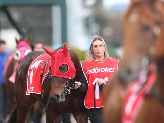 Thoroughbred action in Victoria heads to Moe on Tuesday afternoon.