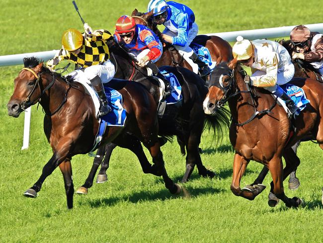 Thoroughbred action heads to Nowra and Tamworth in NSW on Tuesday afternoon.
