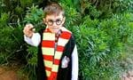 "13. Harry Potter  <p>Needs no introduction. Needs no further explanation and the costume is easier than you think.<a href=""http://www.kidspot.com.au/things-to-do/activities/easy-costume-harry-potter-costume"">See here for how to create your own Harry Potter costume.</a></p>"