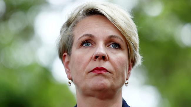 Tanya Plibersek says it's disturbing to reflect on how Julia Gillard was treated as PM — much of it something a man wouldn't have copped. Picture: Hollie Adams