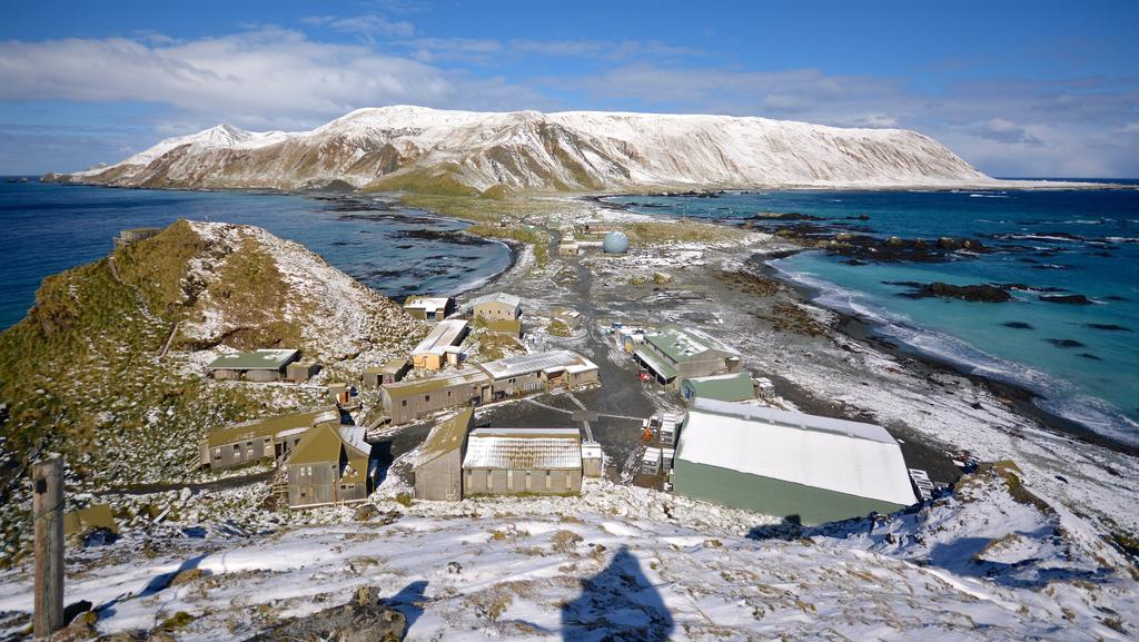 Image result for joseph hatch Macquarie Island images
