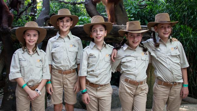 Apply for your chance to become a mini zookeeper at Sydney Zoo.