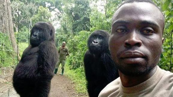 This selfie received thousands of likes with many thanking the rangers for protecting the animals. Picture: Facebook