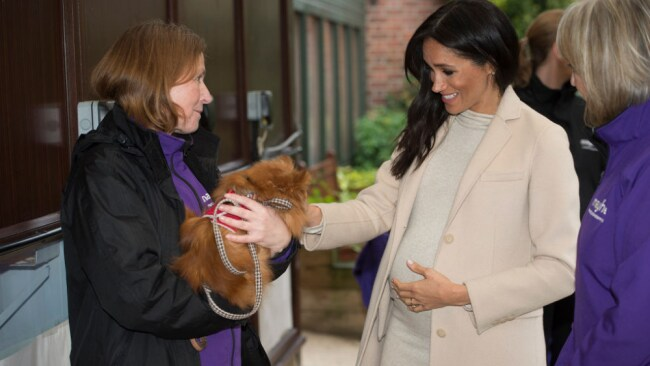 Meghan Markle meets 'Foxy' during a visit to animal welfare charity Mayhew. Source: Getty Images