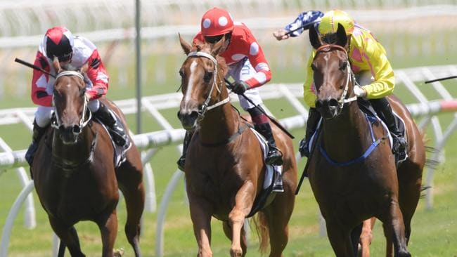 Syd's Footprints (left) was competitive against the talented Sylvia's Mother at Randwick last month. Picture: AAP