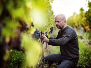 The best Kiwi winemaker you've never heard of