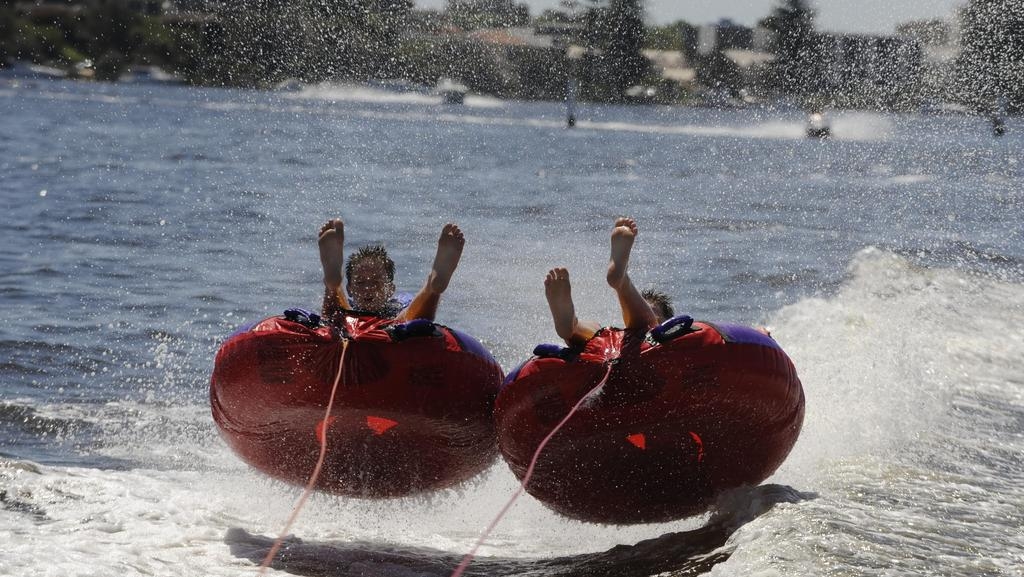 Boat driver to face court over Bunbury sea biscuit mishap
