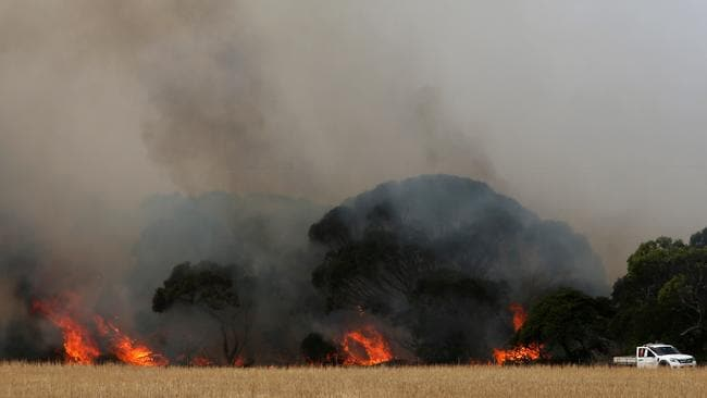 The Morris family and CFS firefighters battle bushfires at the edge of their farm in Karatta on Monday. Picture: Lisa Maree Williams/Getty Images