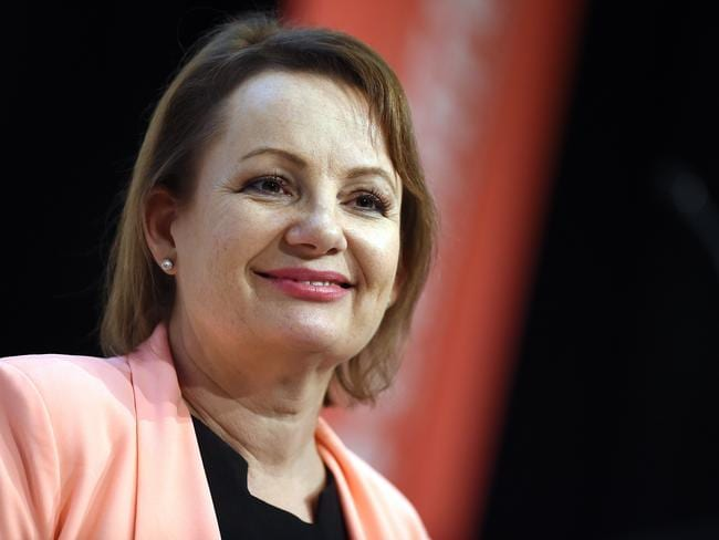 Sussan Ley resigned from the frontbench after she used taxpayer-funded trips to buy property and attend New Year's Eve functions. Picture: AAP