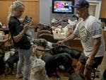 """Gretchen, left, and Ron Levine of """"A Paw Above"""" in Hollywood, Fla., take care of 20 dogs and 21 cats as they have been inundated with pet care requests by people fleeing Hurricane Irma, Friday, Sept. 8, 2017. Picture: AP"""