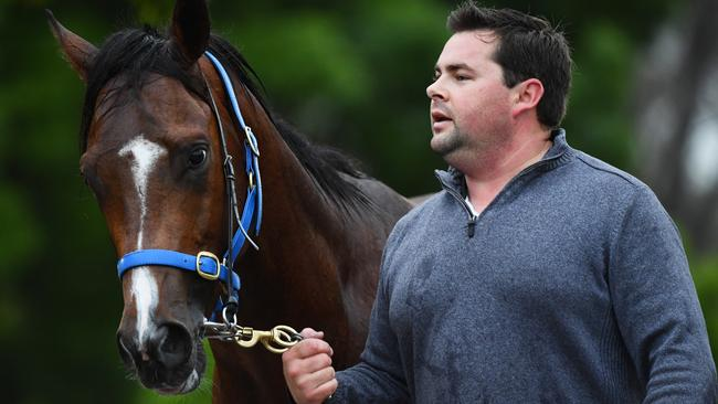 Castelvecchio is the only three-year-old in this year's Cox Plate field. Picture: AAP