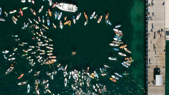An aerial view from the Port Lincoln protest. Picture: Robert Lang