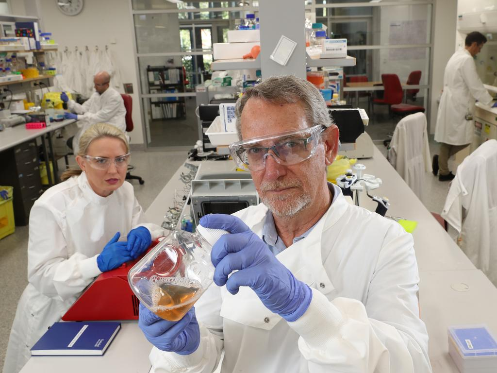 Minister Kate Jones, Dr Dan Watterson, Professor of Virology Paul Young, and Dr Keith Chappell, in the Molecular Virology Lab, where they are working on a rapid response vaccine. Picture: Liam Kidston