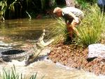 Steve Irwin faces off with a croc.