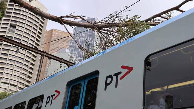 Tree branches are seen on top of a Metro train outside Jolimont station in Melbourne, following the wild winds. Picture: AAP Image/Alex Murray.